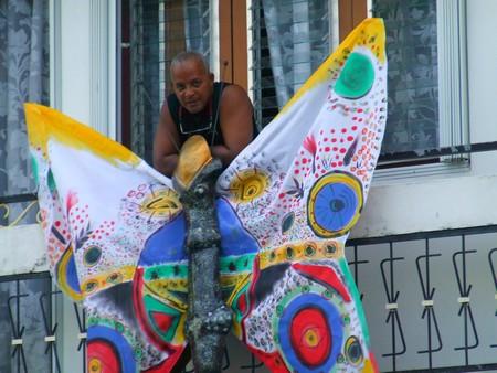 Papillon du Carnaval