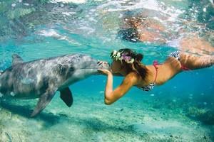 Miss Tahiti et dauphine