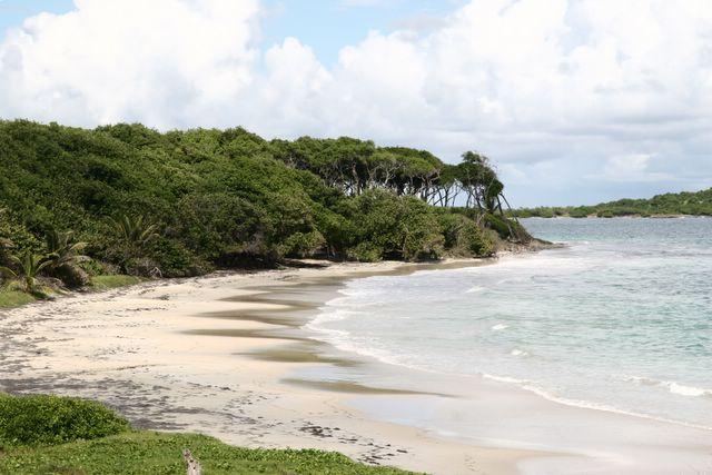 Tourisme Martinique