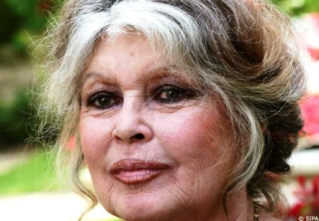 Brigitte Bardot Racisme