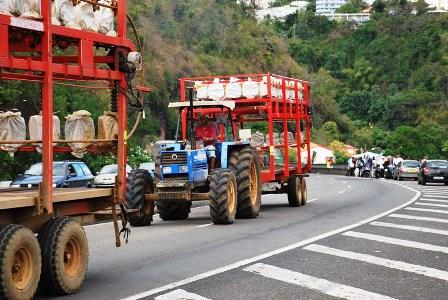 Tracteurs de la manifestation