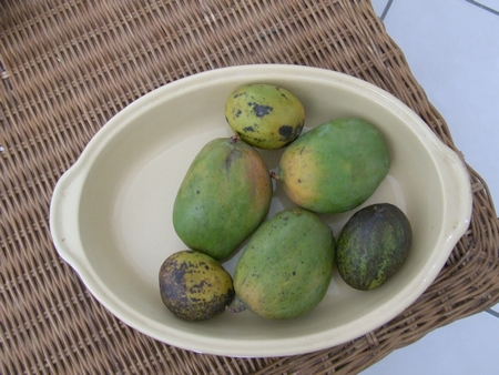 Fruits de Martinique