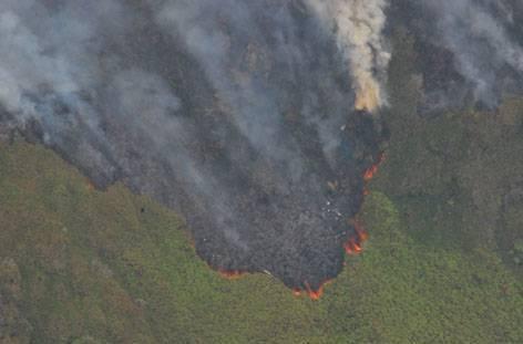 Montagne Pelée incendie