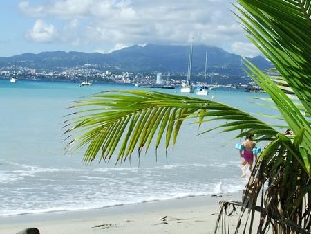 Erwan Tabarly Bretagne Martinique